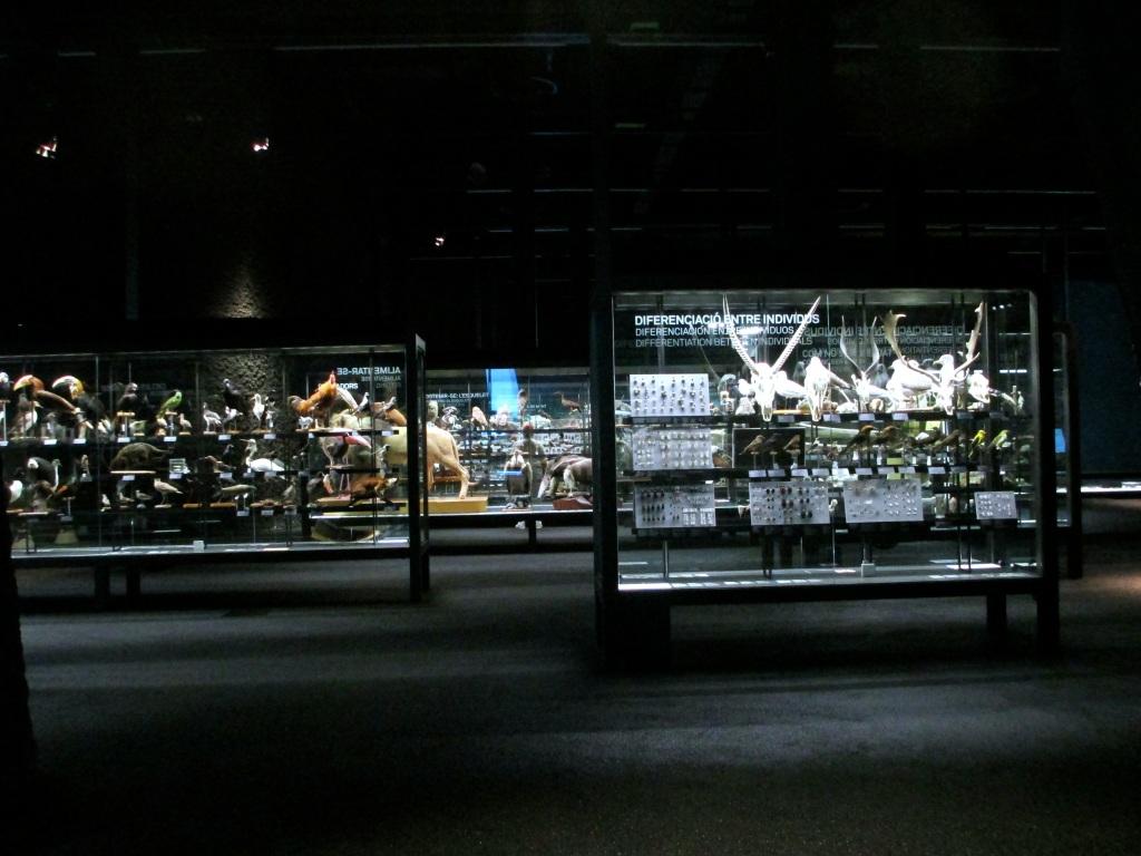 Museu de Ciències Naturals (Museu Blau)
