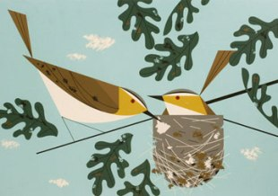 Birds by Charley Harper. The Giant Golden Book of Biology, 1961.