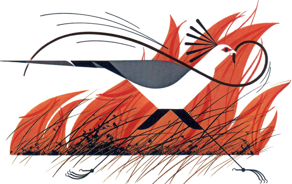 Secretary Bird and Mamba by Charley Harper.  The Animal Kingdom, 1967.