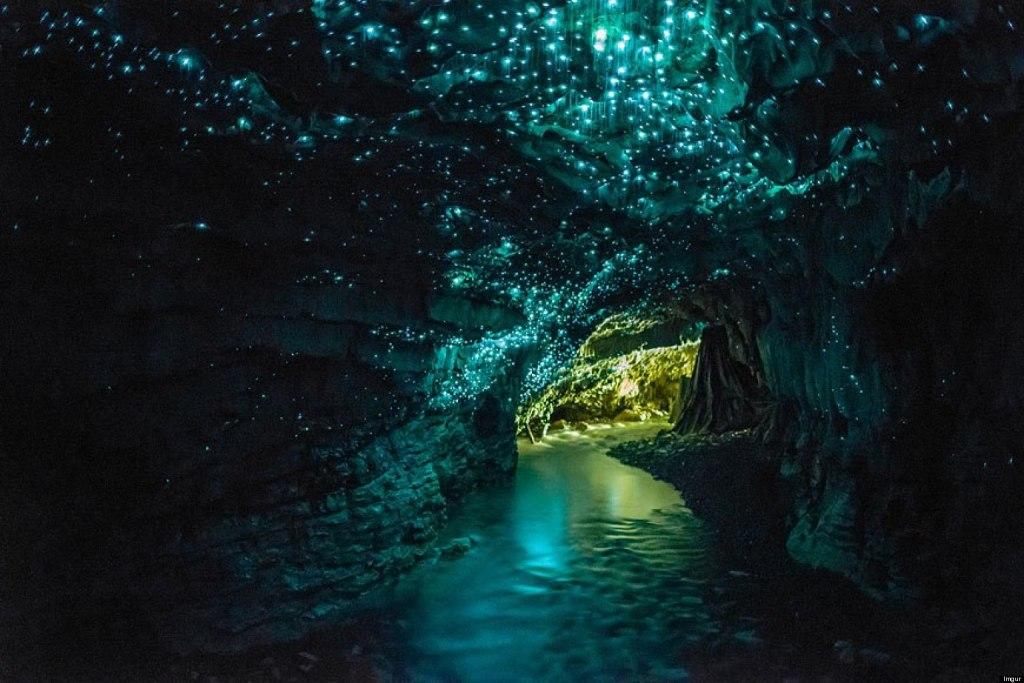 Waitomo 'Glowworm Grotto'.  Photo author unknown.