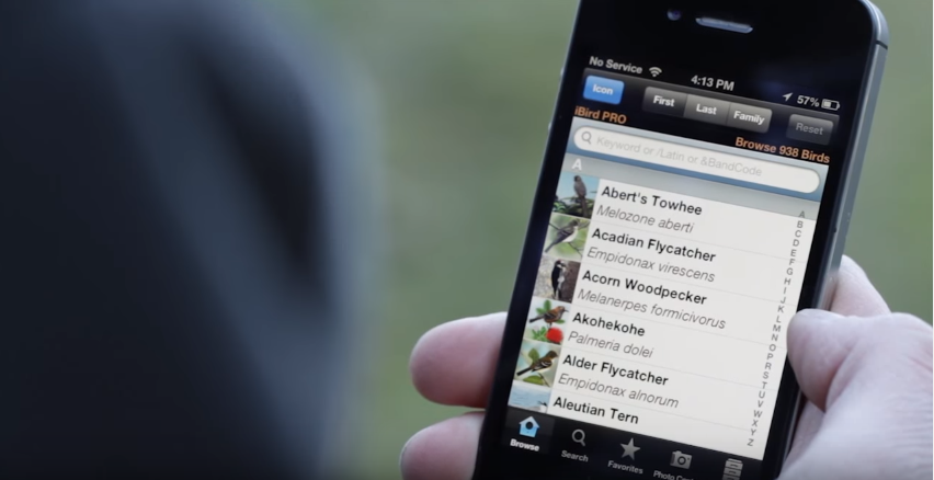 iPhone apps for naturalists - iBird Pro